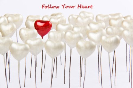 Follow Your Heart